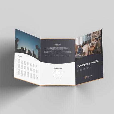 Company Profile-Express